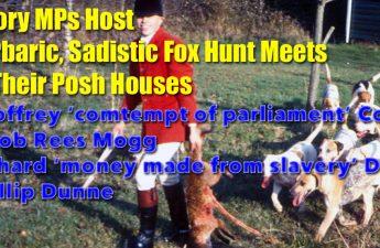 4 Tory MPs host fox hunts