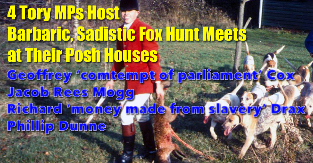 4 Tory MPs host fox hunts