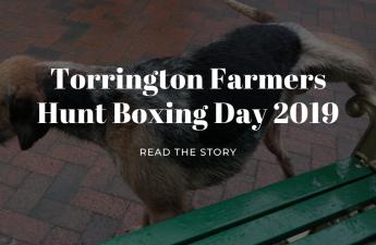 torrington farmers hunt boxing day 2019